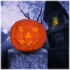 download Halloween Pumpkin 3D Screensaver